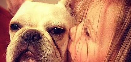"""MTV's """"Teen Mom 2"""" Dog Killed in Mauling Incident 