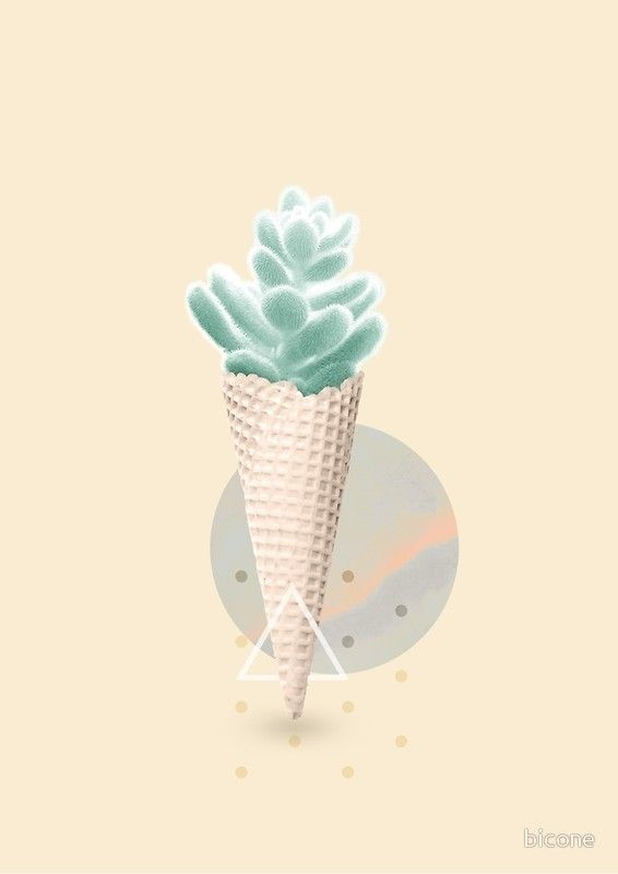 Succulent ice cream cone
