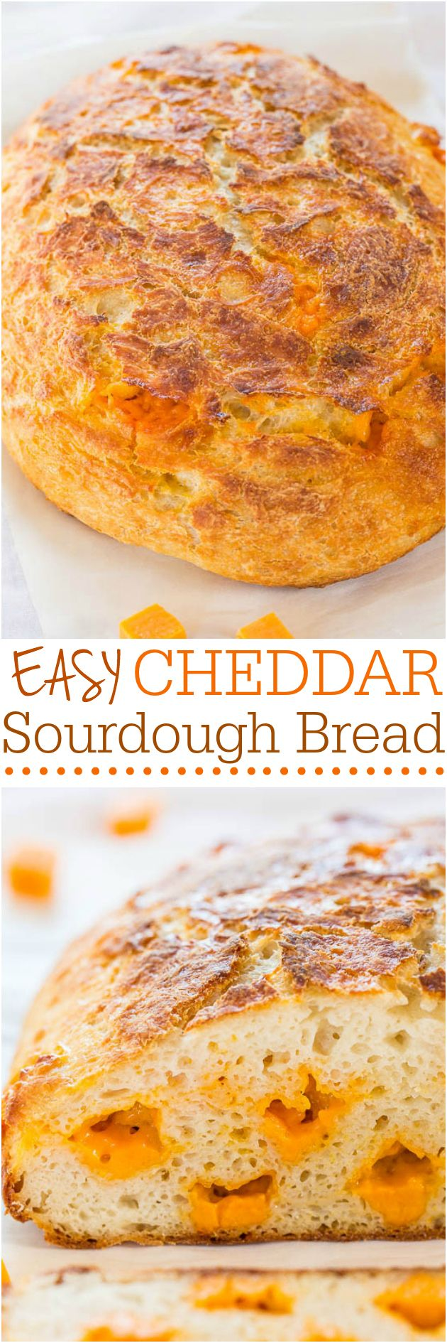 Easy Cheddar Sourdough - No starter required and so easy! It tastes like it's from a fancy bakery! Who can resist homemade cheesy bread!! @averie