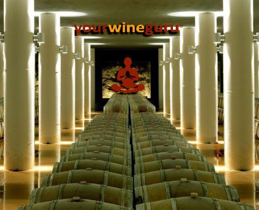 yourwineguru seleziona per voi i migliori vini della storica cantina toscana #Mazzei