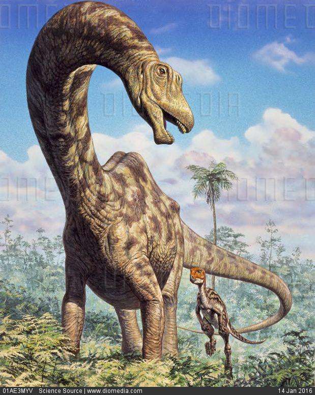 Seismosaurus - stock photo