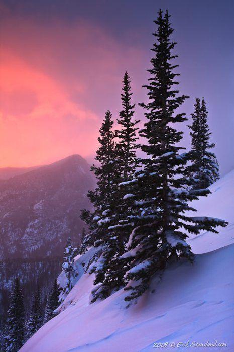 """Half Mountain Sentinels"" Rocky Mountain National Park - ©Erik Stensland - God is the Famous Artist."