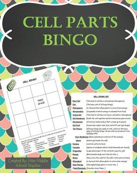 Cell Parts Bingo by Miss Middle School Teacher This is a bingo game that I created for my middle school science students to review key vocabulary from our cell parts unit. Students fill their card with any words from the list and I call out the definition.