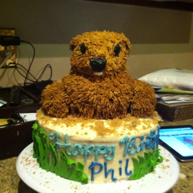 Groundhogs Day Cake #stacyscakes my brothers birthday cake!