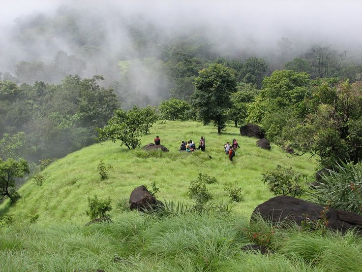 Amedikallu Trekking >>>  The name #Amedikallu in Kannada means Ame -Turtle Dikallu (Tulu Language) –Stones, as the peak forms the shape of the 3 stoned turtle from one side and as a stove from the other side. This place is at a distance of 300 kilo meter from Bangalore and close to #Dharmastala the temple town worshiping the lord Manjunatha Swamy.  #treks #trekking #AmedikalluTrek