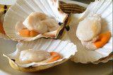 Foto: Capasanta o cappasanta cruda su piatto. Cucina di pesce