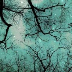 """""""Winter teal Christmas sky"""""""