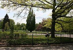 The Gwen George Memorial Rose Garden