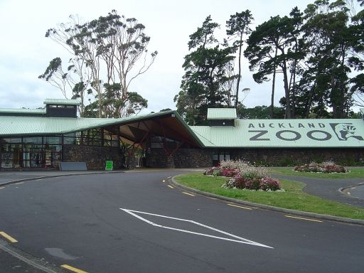 Auckland Zoo. Really want to take the kids here