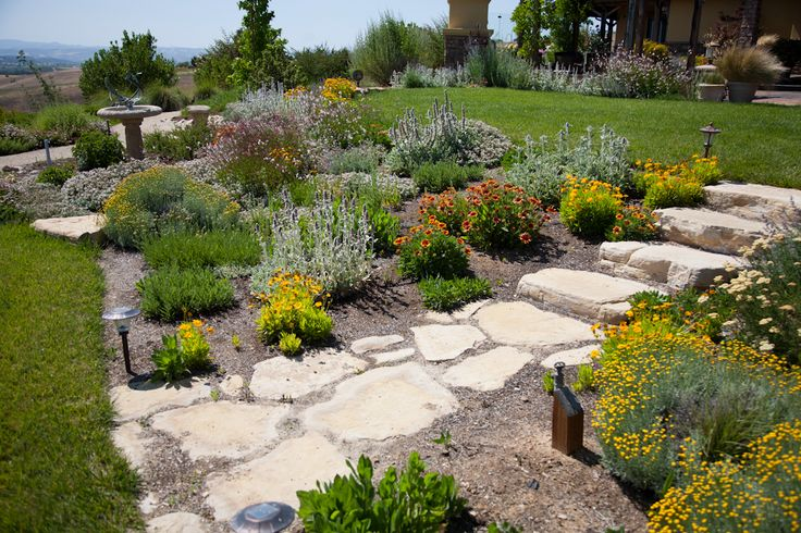 What surprises people most about my water-wise landscaping:  That you can conserve water and still have so much color and variety.