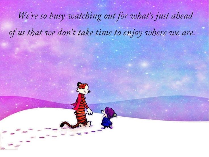 Calvin and Hobbes: