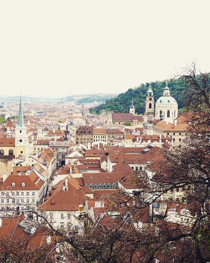 Praha ❤️/ a jeden článek o nádherné romantické zapadlé vyhlídce právě teď na blogu. Tak krásný den. Já se těším, až mi bude líp a budu se moct procházet po těch zapadlých uličkách Prahy, kde na mě vždycky dýchání genius loci ✨