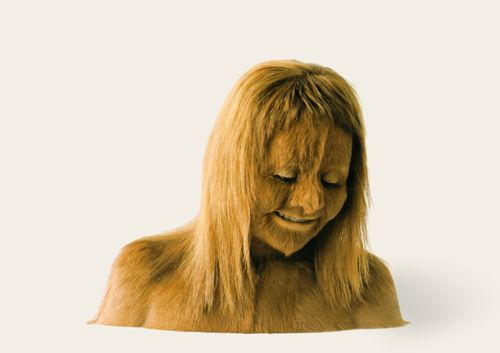 Animal Hair Plaster : Images about taxidermy sculpture on pinterest wigs