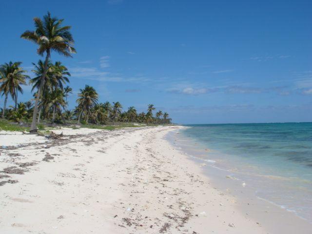 33 best images about playa del carmen real estate on