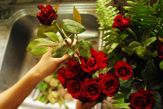 How to Arrange a Dozen Roses in a Vase    You do not need to buy expensive roses from a specialized florist to enjoy a beautifully designed vase of fresh roses. You can easily arrange a dozen roses yourself by buying them at the supermarket and taking the time to carefully arrange them yourself at home.