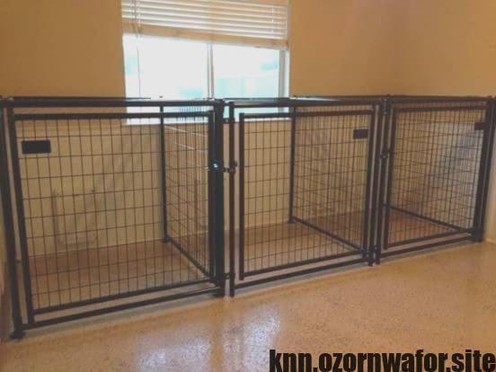 Farmhouse Double Dog Kennel Artsy Reclaimed