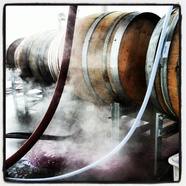 Winemaking: 1% Art, 1% Science and 98% Cleaning ...Wash those barrels - steamy action: