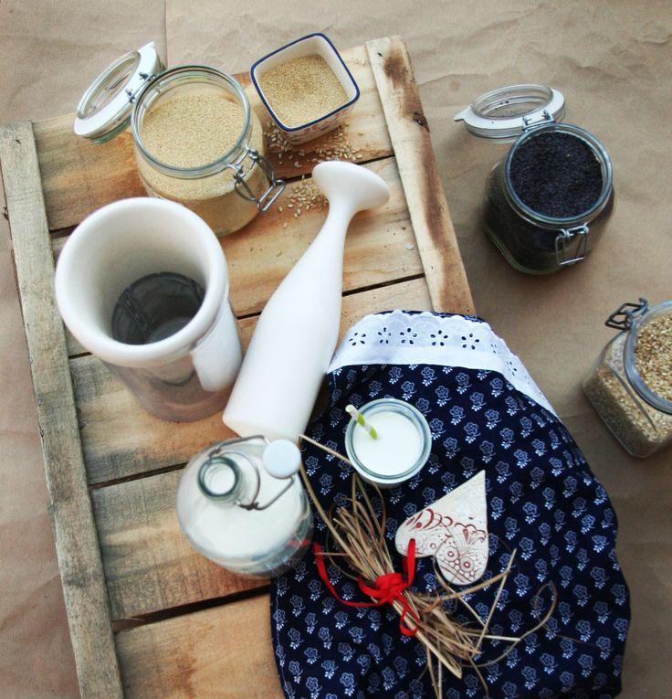 leche vegetal y jugo natural con chufamix