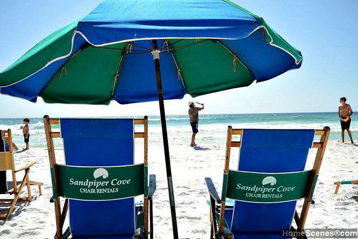 Pet Friendly Beach Rentals On A