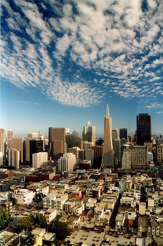 San Francisco, California <3 With the Trans- America building and beautiful altocumulus clouds (: