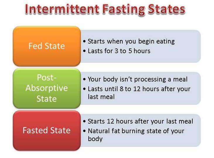 intermittent fasting essay