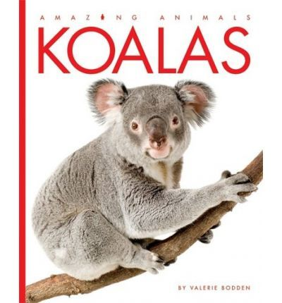 A basic exploration of the appearance, behavior, and habitat of koalas, Australias treeclimbing marsupials. Also included is a story from folklore explaining why koalas do not have tails.