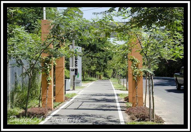 blogAuriMartini: Minha cidade natal : Primeira ciclovia da américa é de Campo Bom