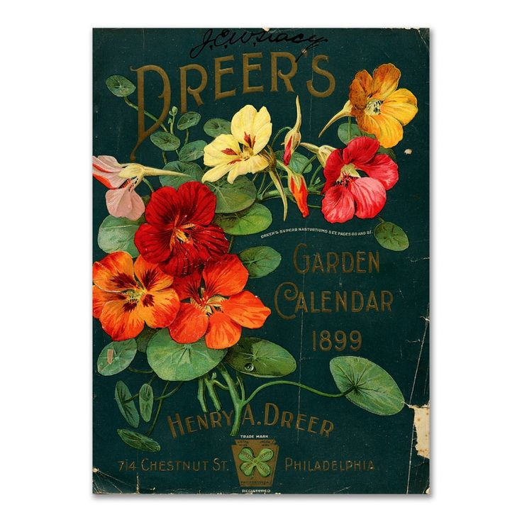 Vintage Seed Packet Image Of Company Calendar On Tin Sign