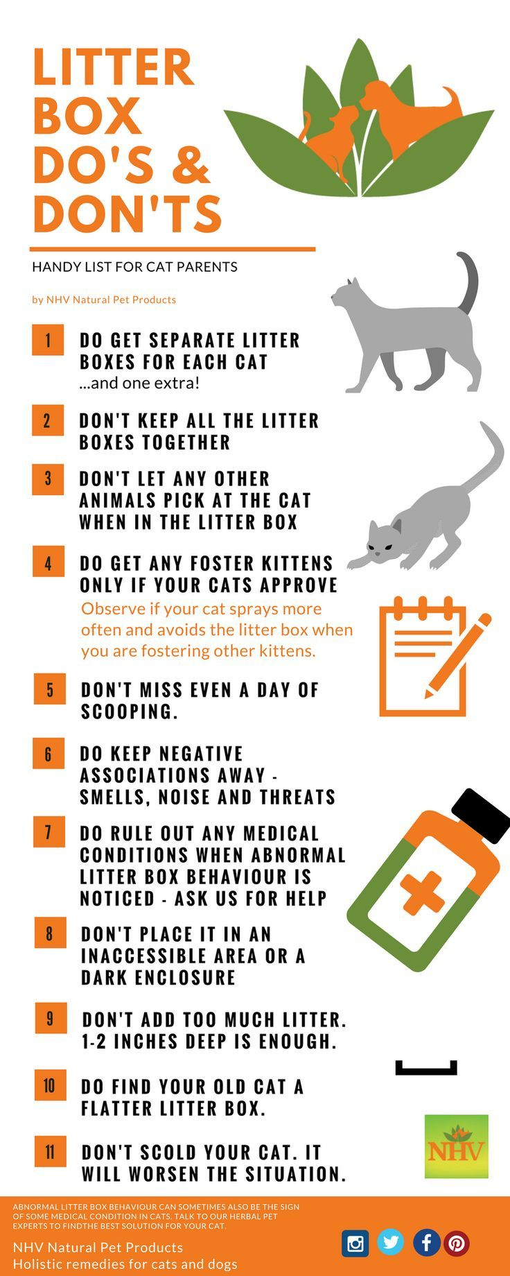 7 Reasons Your Cat Is Urinating Outside The Litter Box Litter Box Cat Parenting Cat Training Litter Box