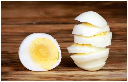 36 high protein low carb foods