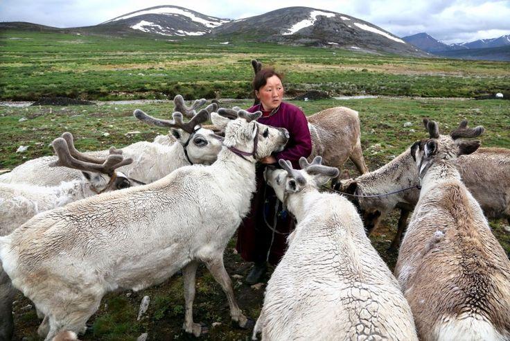 Οι Τσατάνοι νομάδες στην Μογγολία.  ©Pascal Mannaerts