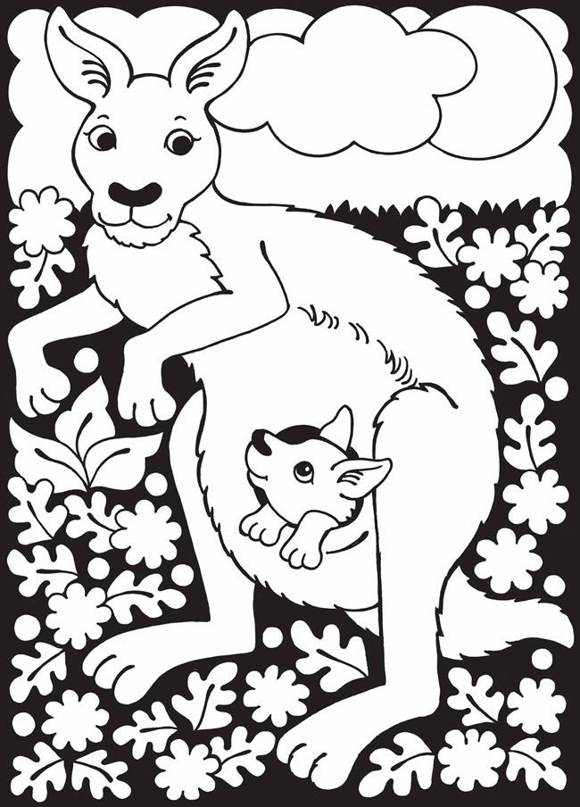 64 Best Animal Coloring Pages Images On Pinterest