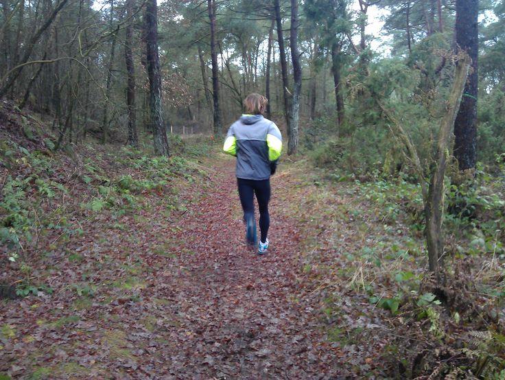 De eerste Dickninger Crossloop vond zaterdag 1 maart plaats op het landgoed Dickninge in de Wijk. Op het landgoed was een prachtig en zeer afwisselend parcours uitgezet.