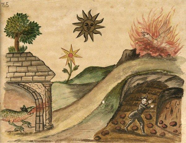 Fine Art Print//Poster Alchemical Illustration Omnia ab uno natura prima materia