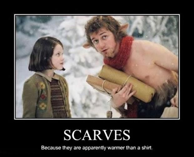 2ff97beb7180d847143751768cc20d87 chronicles of narnia scarfs 201 best narnia images on pinterest chronicles of narnia, narnia,Narnia Memes