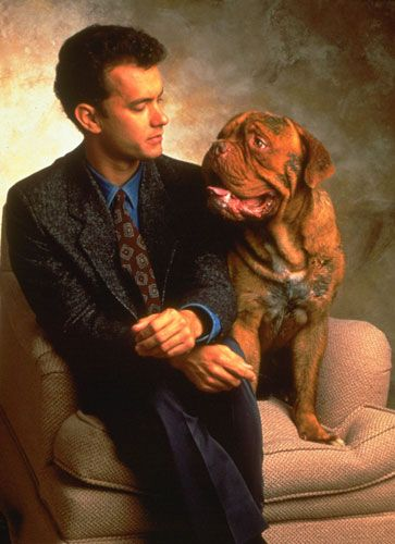 Tom Hanks and infinitely more intelligent friend musing on the superiority of dogs