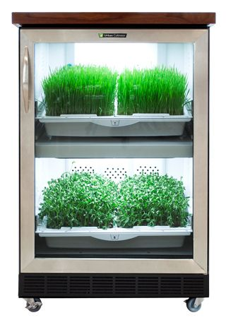 Urban Cultivator Home – You get 365 days of perfect growing conditions for all of your favorite herbs, microgreens, and vegetables!