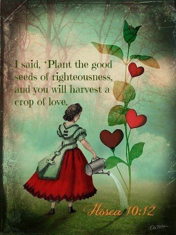 Hosea 10:12. I said, 'Plant the good seeds of righteousness, and you will harvest a crop of love...
