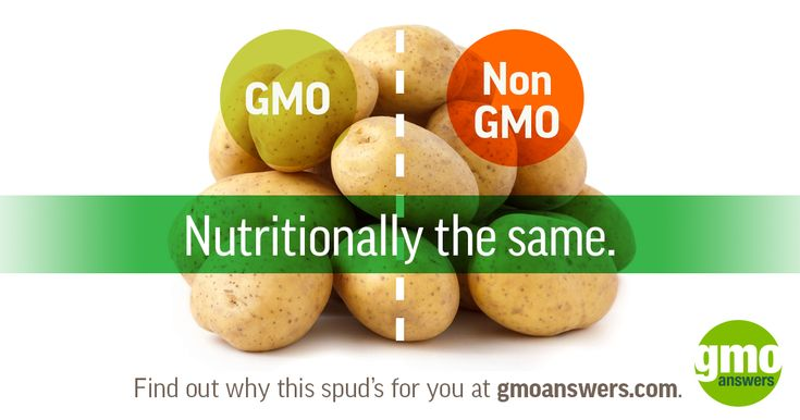 How much nutrition is lost with GMOs? None. Learn how GMOs are made.