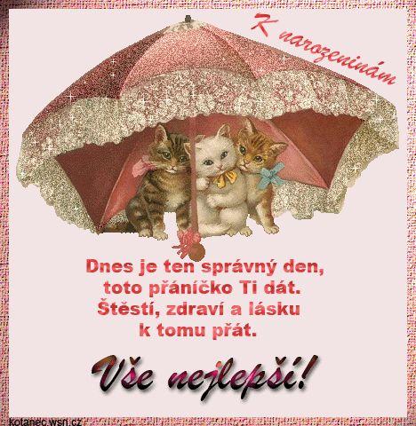 Přání k narozeninám na Lide.cz