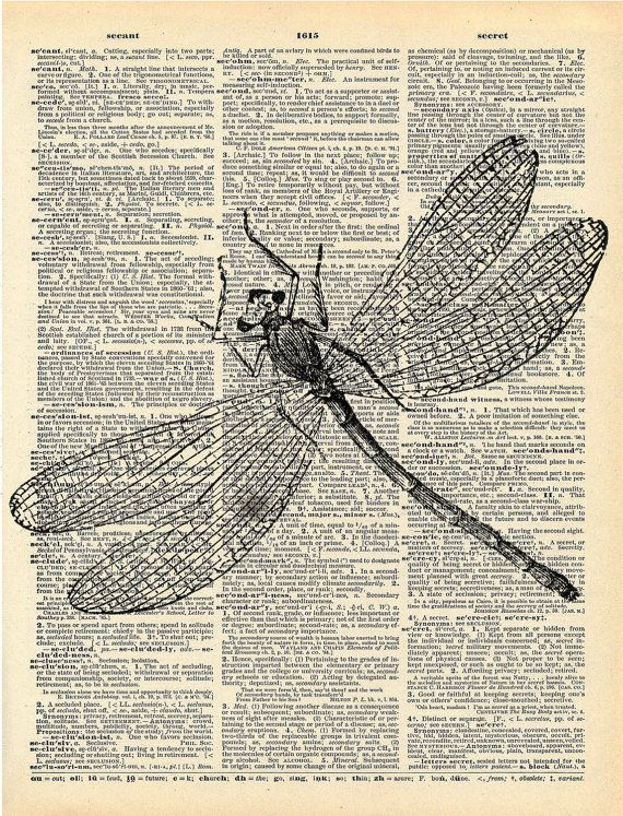 Antique+Book+Print++Dragonfly+Insect+Art+by+missquitecontrary,+$10.00