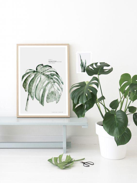 324 best Déco Plantes vertes images on Pinterest Green plants