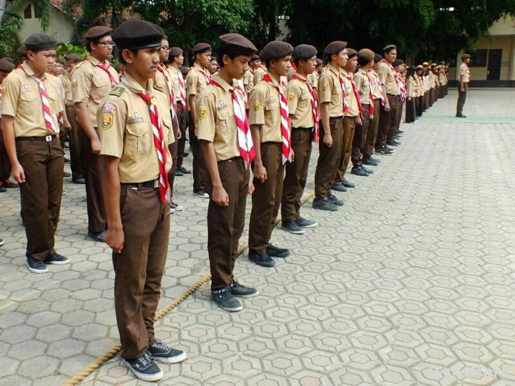Scout of Indonesia