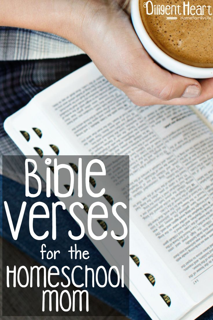 Bible verses that are sure to encourage and strengthen your #homeschool mama heart. Bible Verses for the Homeschool Mom I adiligentheart.com