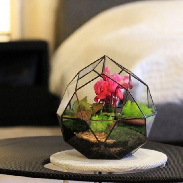 Миниатюрные тропические сады: флорариумы от Mini Nature #FAQinDecor #design #decor #architecture #interior #art #дизайн #декор #архитектура #интерьер