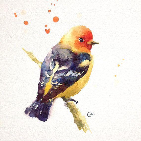 Watercolor Bird  Original Watercolor Painting 7 by CMwatercolors, $50.00