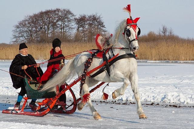 Sleigh races on the IJsselmeer in Hindeloopen ...