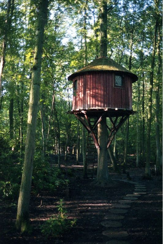 family builds amazing treehouse home and garden design ideas