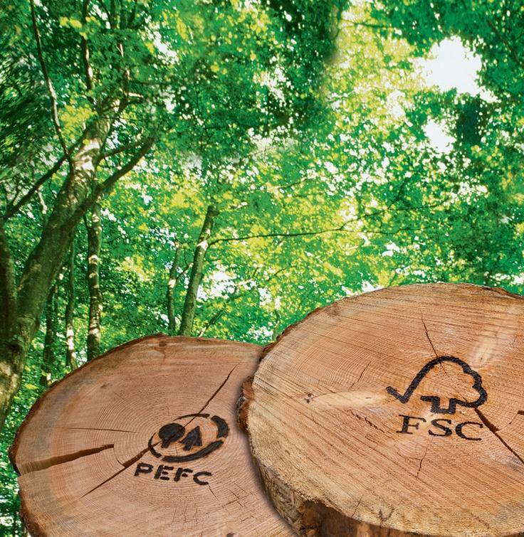 Ideal Umweltschutz Jeder Schritt ist wichtig Weitere Infos findet Ihr auf unserer Nolte K chen Website