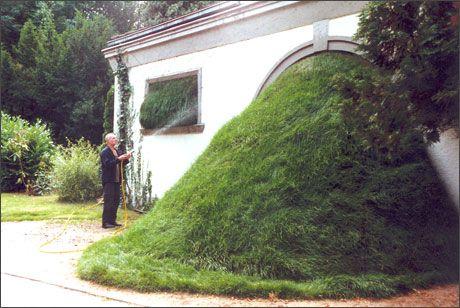 Cornelia Konrads - grass works (2002) Stand Orte, Dreieich (Germany)
